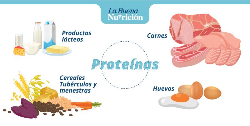 que alimentos que contienen proteínas