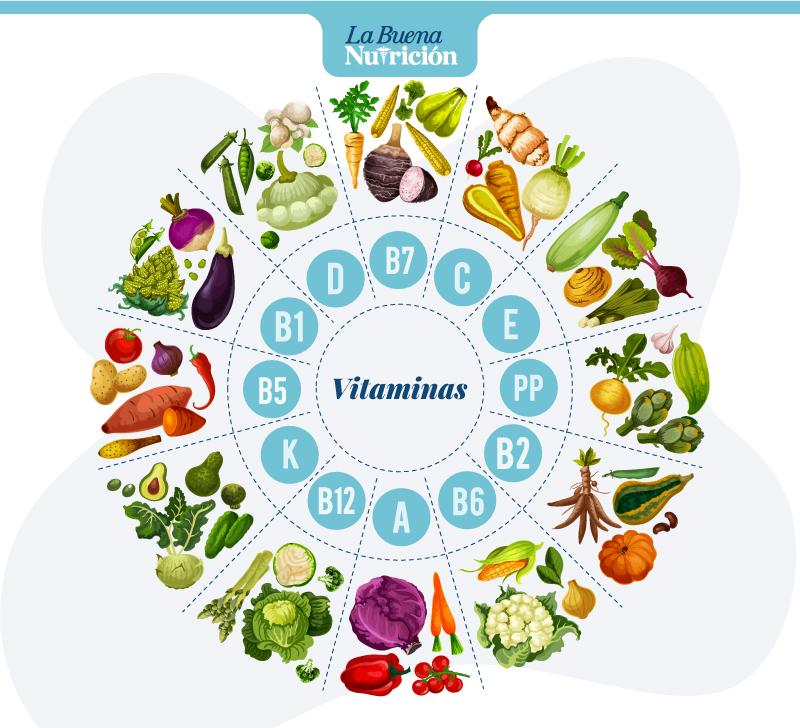 clasificacion vitaminas